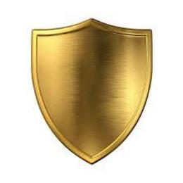 shieldin