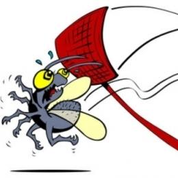 bugbasher